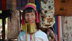 My Forest My Habitat – The Tribes of India