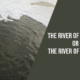 The Contaminated Yamuna– World's Most Polluted River