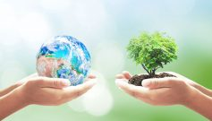 Ingersoll Rand Employees Celebrate Earth Day in India - RealtyMyths
